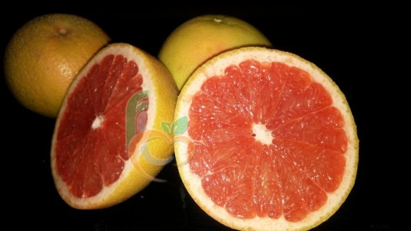 GrapeFruit the best quality by Fruit Link