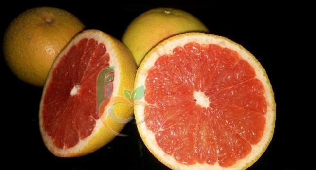 Grape fruit (8)