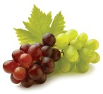 Egyptian Grapes | FruitLink