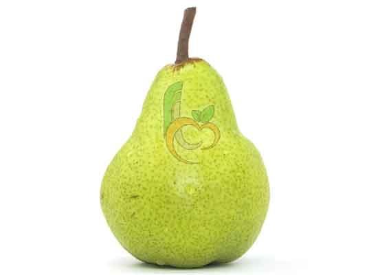 Green Yellow Pear