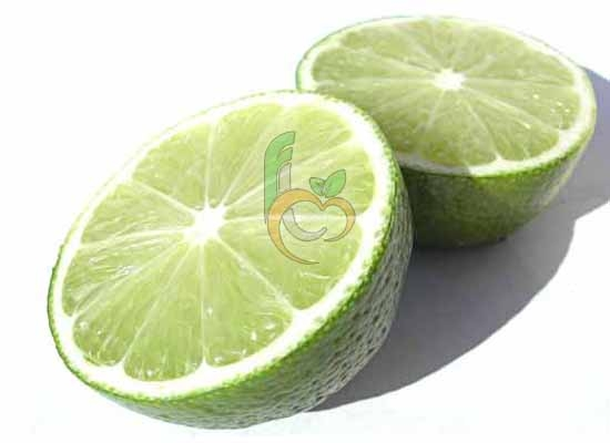 Fresh Egyptian lime | Citrus | Fruit Link