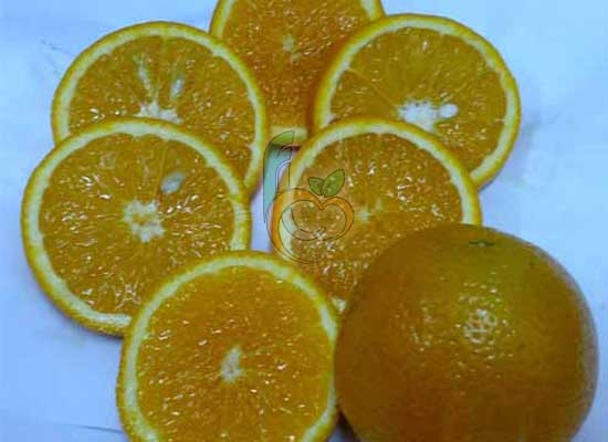Sukari orange from Egypt
