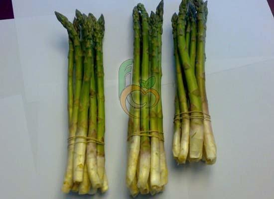 Fresh Aspargus