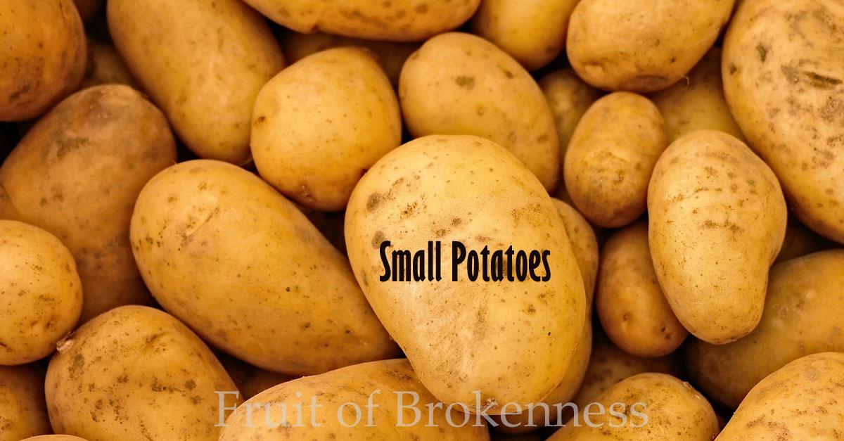 Small Potatoes Blog