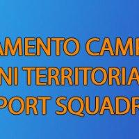 Regolamento Campionati Organi Territoriali FSSI - Sport Squadra