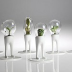 Funny Creative Terrariums-1