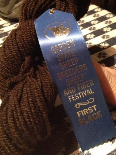 The award winning yarn Suzy spun from Socks' wool