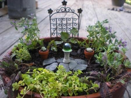 One of Fran's Mini Gardens