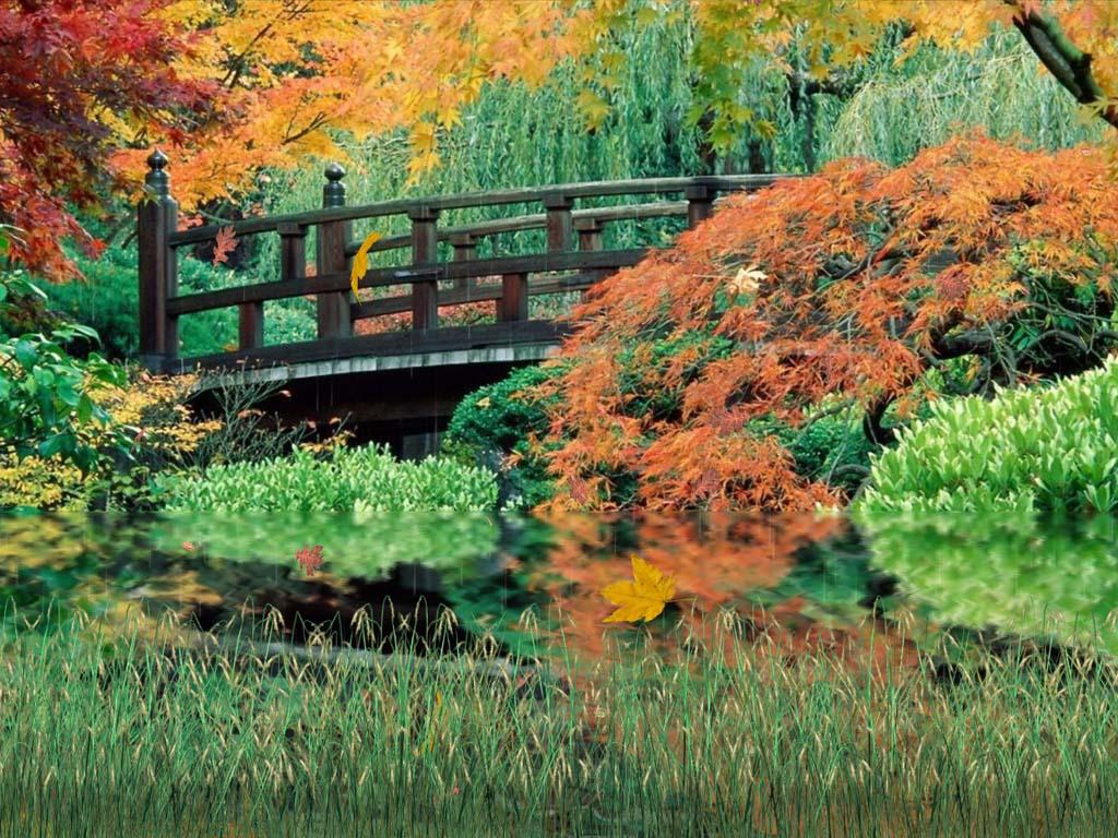 Falling Leaves Wallpaper Screensavers Autumn Scenery Animated Wallpaper Autumn Animated