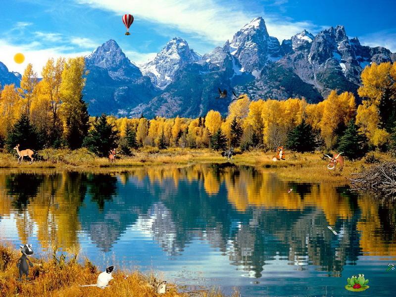 Falling Into Water Wallpaper Autumn Fantasy Nature Screensavers Fullscreensavers Com