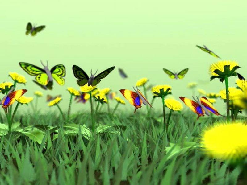 Free Animated Falling Snow Wallpaper Butterflies Kingdom 3d Nature Screensaver