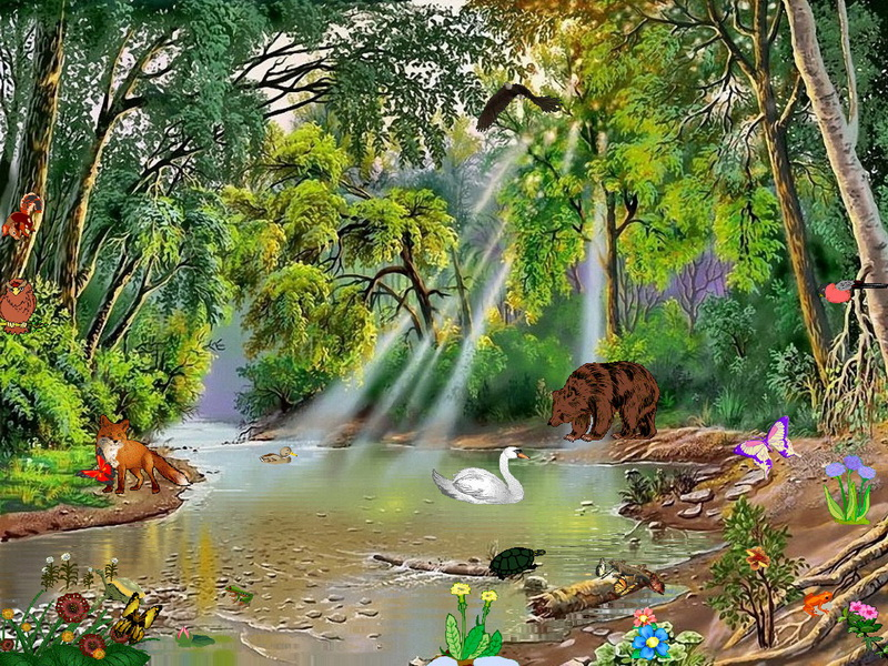 3d Clock Live Wallpaper Enchanting Forest Nature Screensaver Fullscreensavers Com