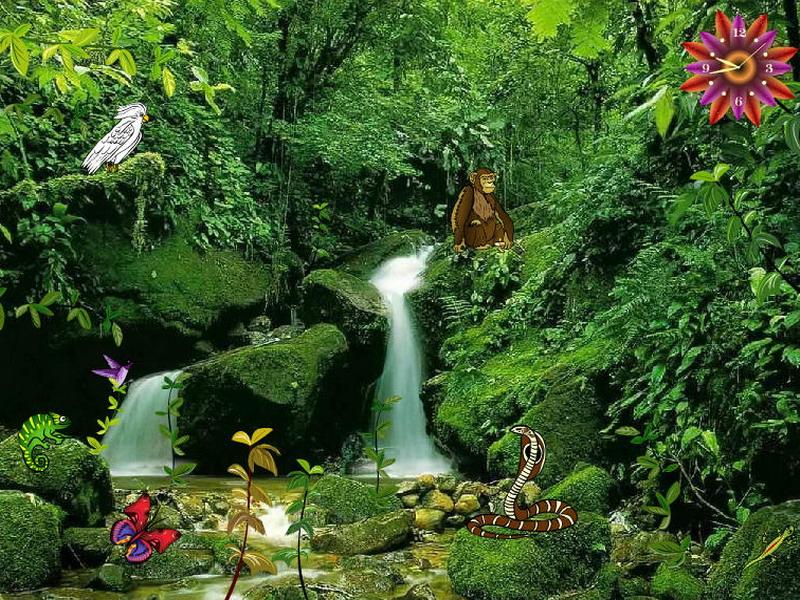 3d Aquarium Wallpaper For Windows 7 Jungle Falls Jungle Screensaver Fullscreensavers Com