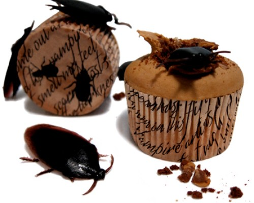 Cockroach Cupcake