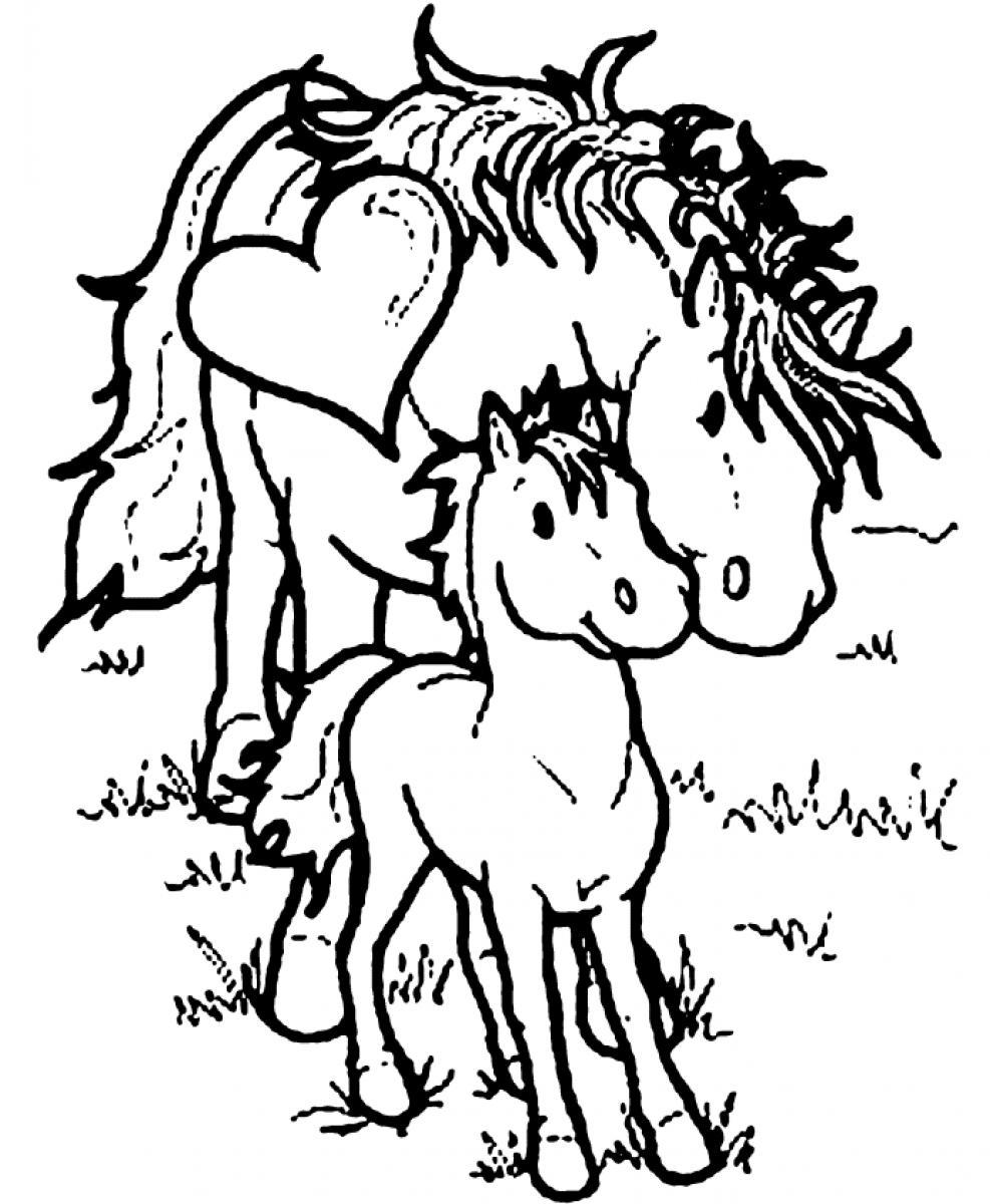 Horse and foal coloring page -  Horse Coloring Pages Download