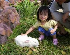 petting zoo rentals san francisco children's party kids parties rent orange county pony
