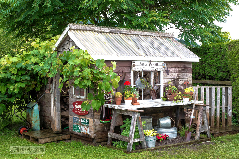 Fall Out Boy Flower Wallpaper Rustic Shed Reveal With Sawhorse Potting Bench And Old
