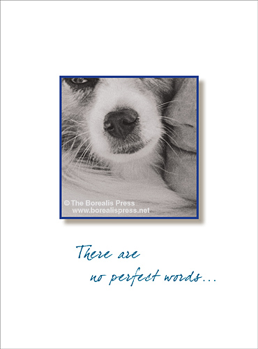 Pet Sympathy Cards - The Borealis Press, Inc