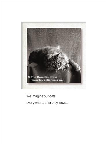 Pet Sympathy Cards - The Borealis Press, Inc