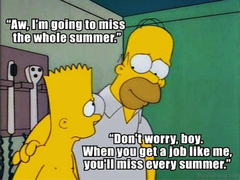 90 Best Summer Memes