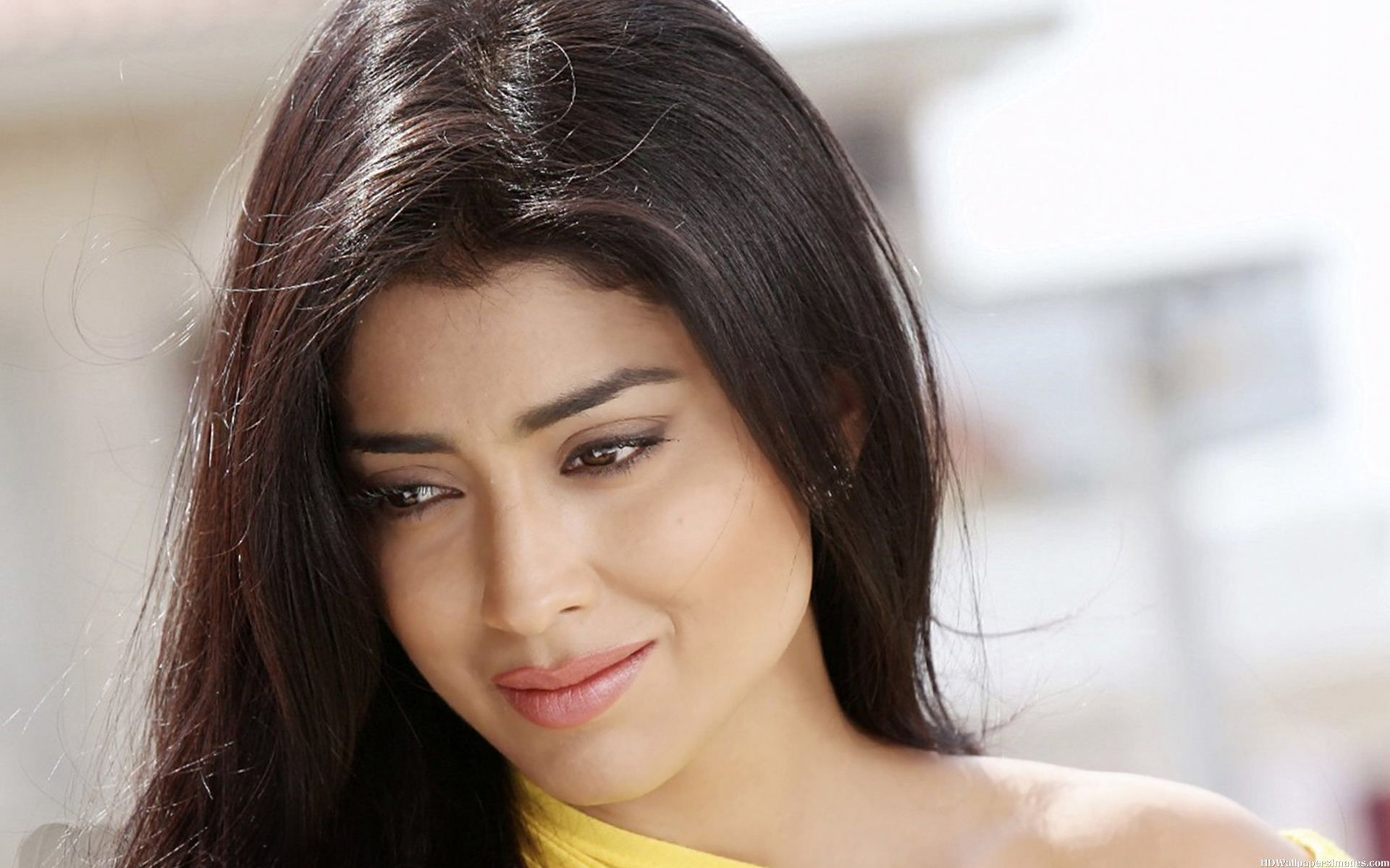 Indian Girl Wallpaper Free Download Best Of Shriya Saran Hot Amp Sexy Photo Wallpapers Latest