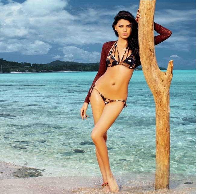 Samantha Ruth Prabhu 3d Wallpaper 25 Best Of Sherlyn Chopra Hot Amp Sexy Photos Wallpapers