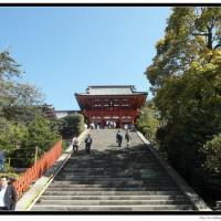 japan_trip_20141218_02