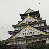 japan_02226_02