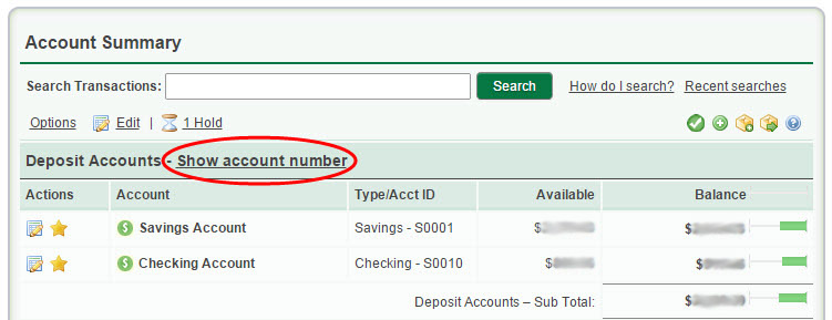 What account number should I use to initiate a direct deposit or