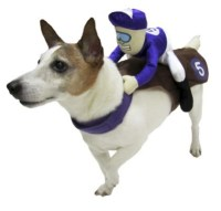 Top 10 Dog Costumes You Can Buy at the Store | Fuzzy Today