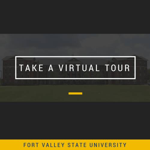 Take a Virtual Tour Art