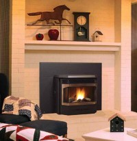 Pellet Fireplace Inserts   Pellet Burning Inserts   Wood ...