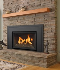 Gas Fireplace Inserts   Modern Gas Burning Inserts   Fort ...