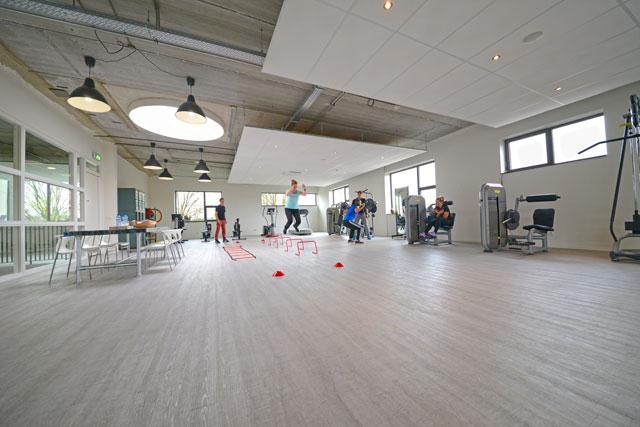 Fysiotherapie-Bladel-Sportfysiotherapie-1│versID