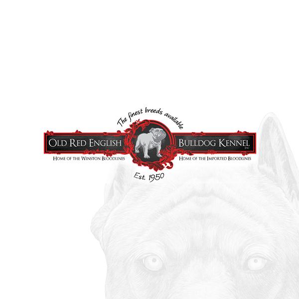 oldbulldogs