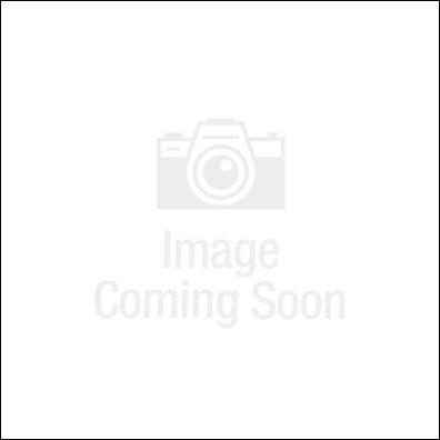 Door Hanger - Delinquent Payment Notice-speed up rent collection