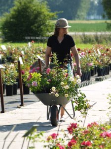 Beirkreek Rose Gardens