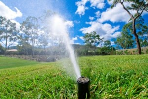 Winter Irrigation Rules in Alachua County