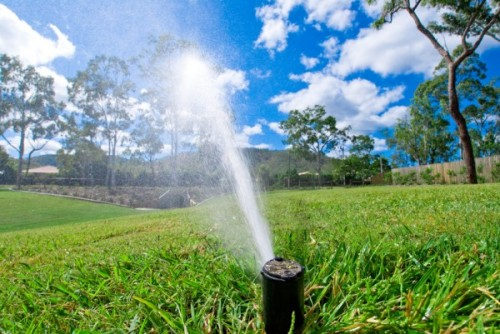 Winter Irrigation Limits Began November 1 for Alachua County