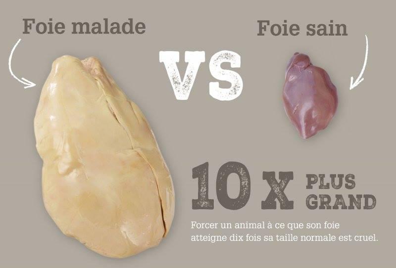 et si on arr tait le foie gras. Black Bedroom Furniture Sets. Home Design Ideas