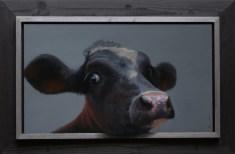 326. Zwart kalf. (37 x 61 cm)