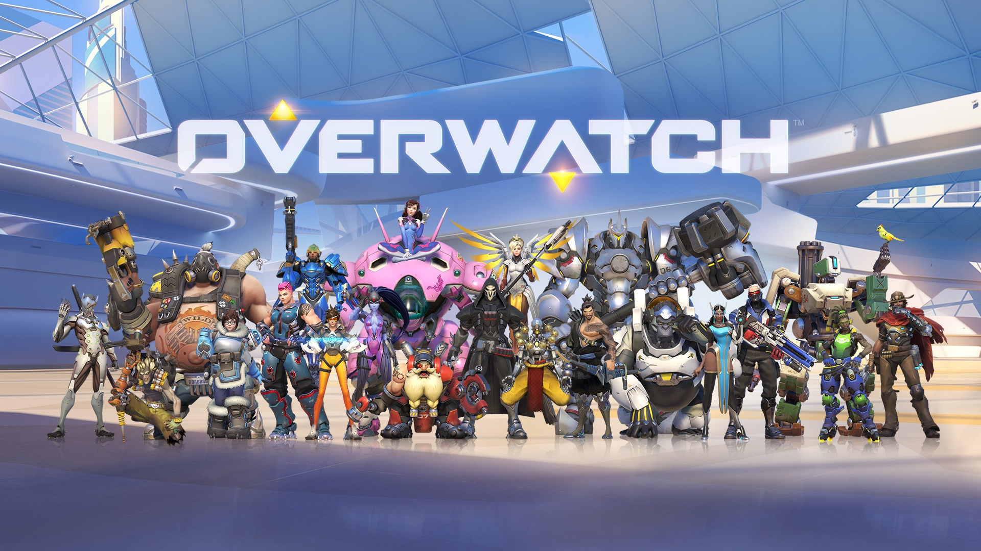 Fall Daisy Wallpaper Overwatch Hearthstone And Heroes Of The Storm Will Get