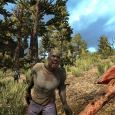 7 Days To Die_Screen_Forest