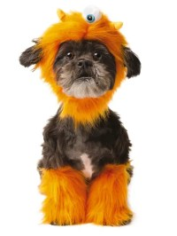 PetSmart Halloween costumes to dress your dog or cat