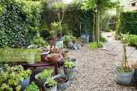 GAP Gardens - Gravel patio with containers planted with ...