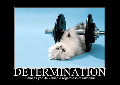 Garage Gyms Image Gallery Motivational Inspiration And Fun Images 1
