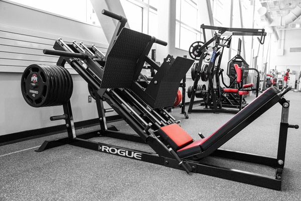 Will rogue fitness become commonplace in commercial gyms