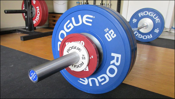 Rogue euro mm premium olympic bar review