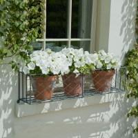 Window box planting tips - Garden Requisites