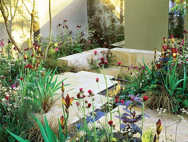 qa with sarah price garden designer garden design garden designer